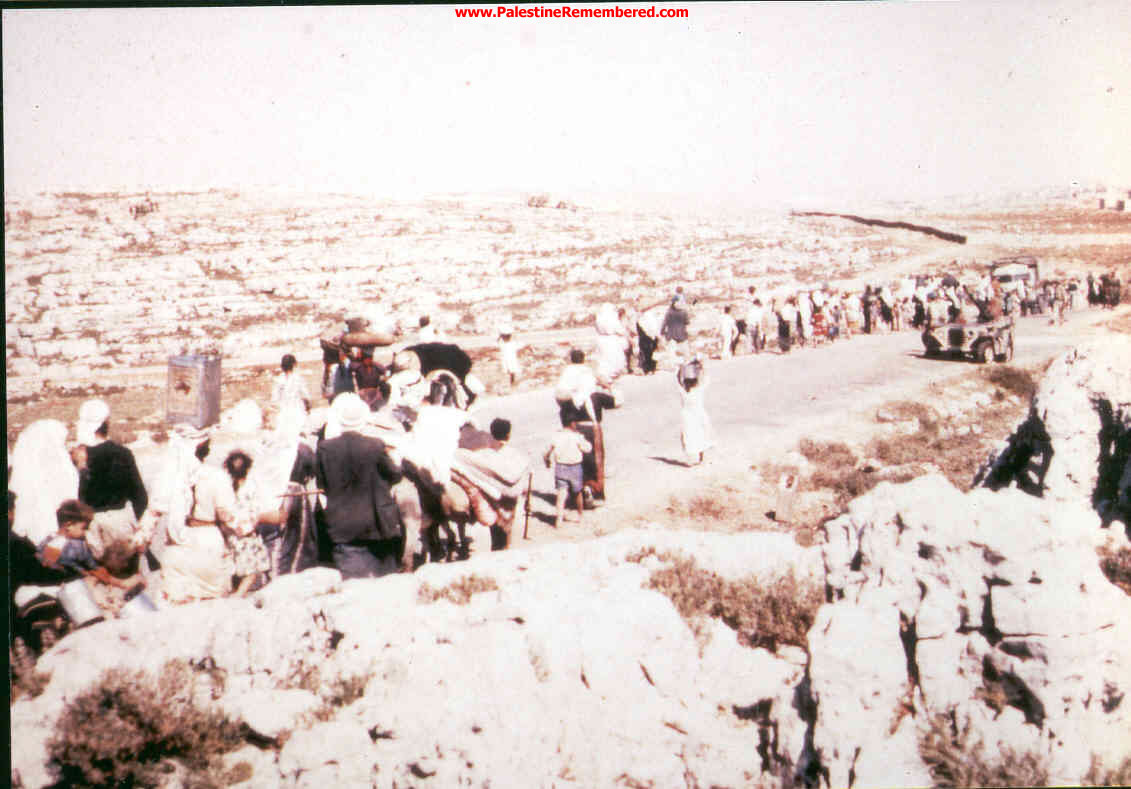 'Imwas - عِمواس : We Were Ethnically Cleansed Out Of Our Village On June 7th 1967. Picture Taken By Joseph Onan, An Israeli Soldier Living Nearby 'Imwas.  #8
