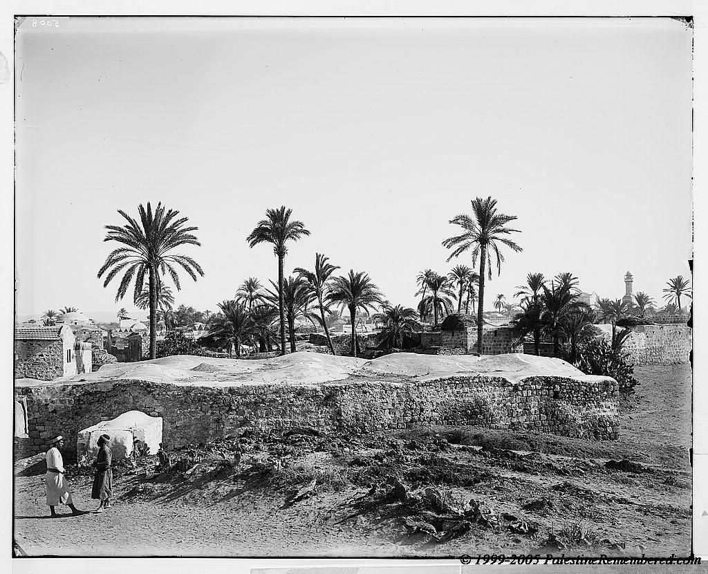 صور من فلسطين Picture9119