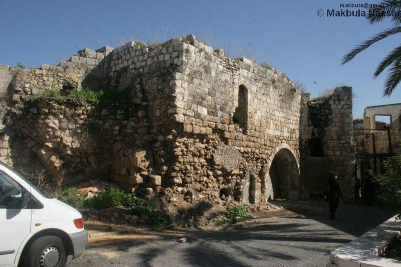 صور من فلسطين Picture12267